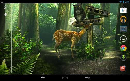 Forest HD 1.2